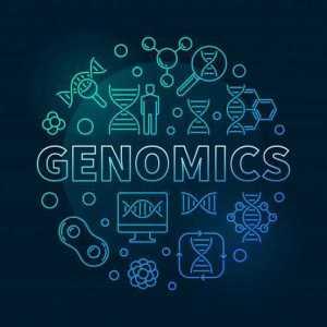 Genomics Glossary The Gene Box Academy